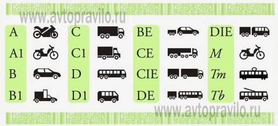 Расшифровка водительского удостоверения